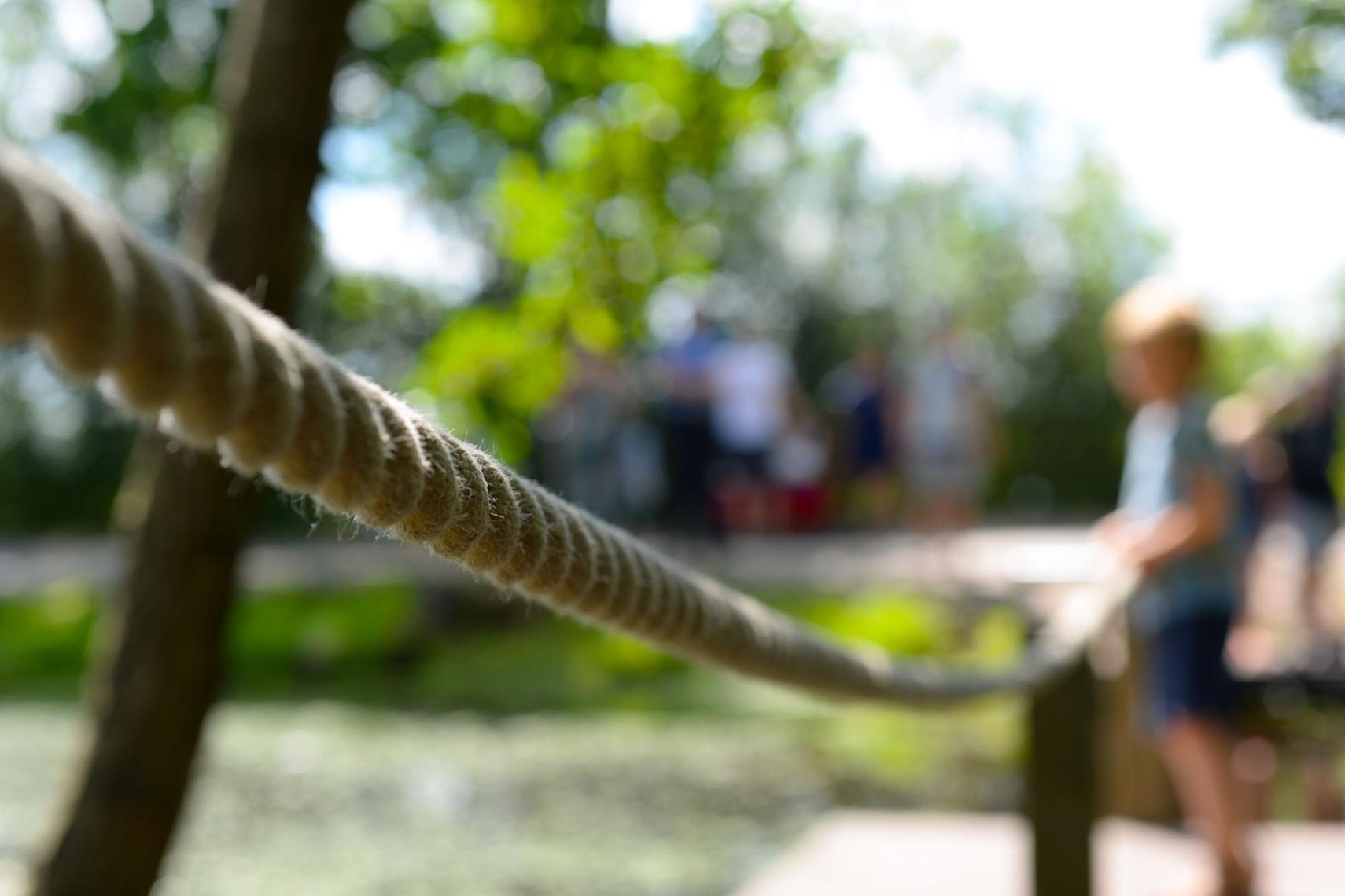 Una corda che rappresenta un appiglio per chi sente la crisi della prorpia impresa